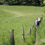 Duitsland-wandelen- reizende-vegetarier