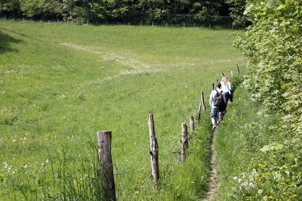 Een wandeling maken in Gummersbach Duitsland reizende ...