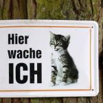 Duitsland-kat-hier-waak-ik