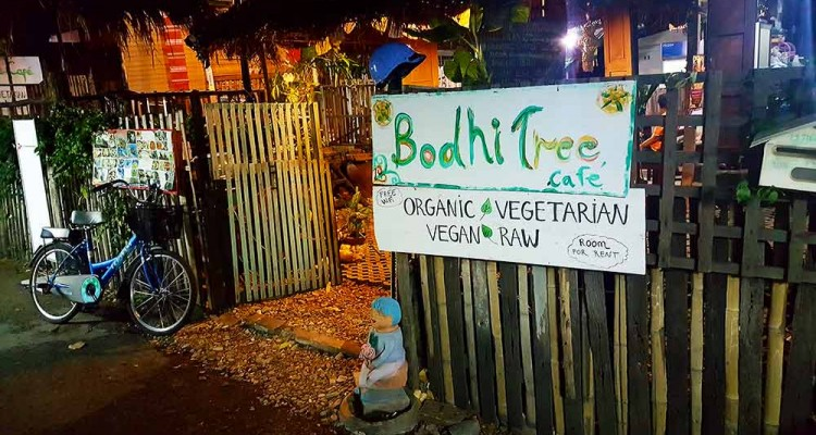 vegetarische-restaurants-chiang-mai-bodhi