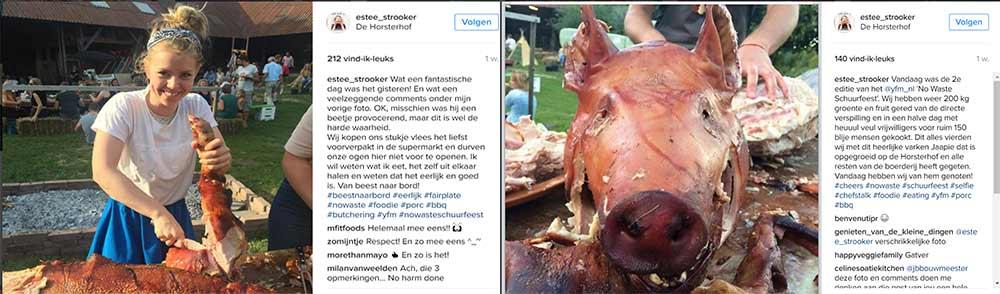 vlees-noch-vis-instagram.jpg